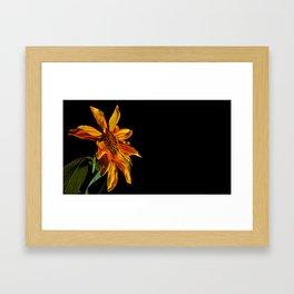 Hot sunflower Framed Art Print