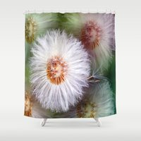 dandelion Shower Curtains featuring Dandelion by Laake-Photos