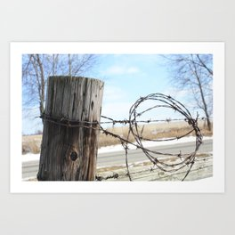 Fence Post and Barbed-Wire Art Print