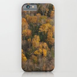 Autumn colors in Canada, marvelous trees iPhone Case