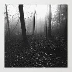 Foggy Forest Canvas Print