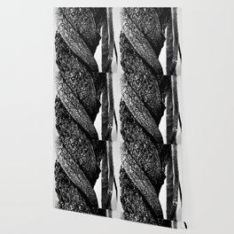 silver trunk of wisteria Wallpaper