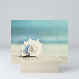 Seashell on Beach Photography, Aqua Blue Shell Coastal Photo, Teal Turquoise Ocean Seashore Mini Art Print