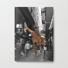 Safary in City. African Invasion. Metal Print