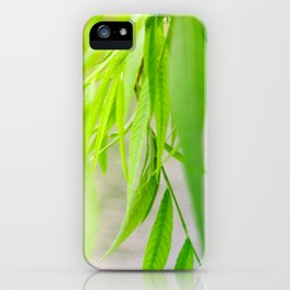 Nature photography green leaf II iPhone Case