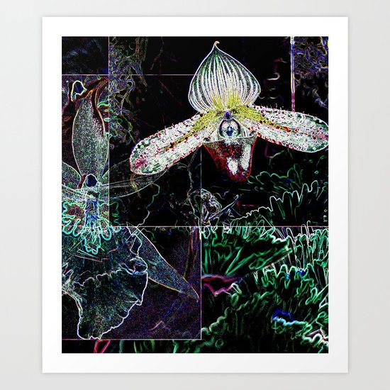 Orchid Collage Art Print