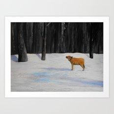 Kylee's Kenyon Calf Art Print
