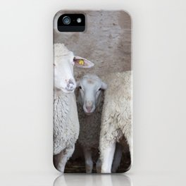 Sheep in a Natural Cave iPhone Case