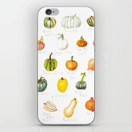 Pumpkins and Squashes iPhone Skin