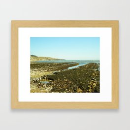 Bowling Ball Beach XII Framed Art Print