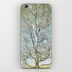 Tree 5 iPhone & iPod Skin