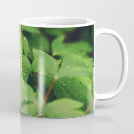 Mystical garden Coffee Mug