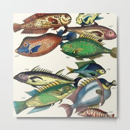 Illustrated Pacific Ocean Exotic Game Fish Identification Chart Metal Print