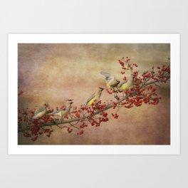 Cedar Waxwings Gathering Art Print