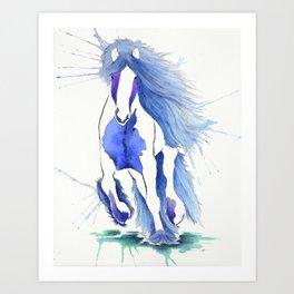 Gypsy Vanner Horse Art Print