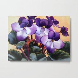 African Violet Metal Print