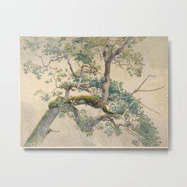 Tree Branches 1852–1908 Charles Reginald Aston Metal Print