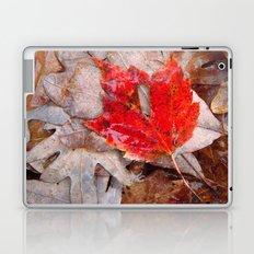 autumnal reverie 657 Laptop & iPad Skin