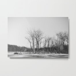 The Un-Winter Metal Print