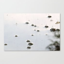 in drops Canvas Print