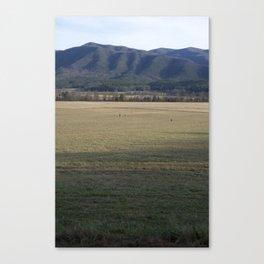 Walking to the Smoky Mountains Canvas Print