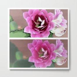 Pink Calandiva Flower 2 Ways Metal Print