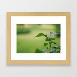 Green Garden Leaves Framed Art Print