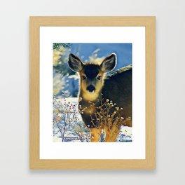 Blue Baby Deer in Winter Light by CheyAnne Sexton Framed Art Print