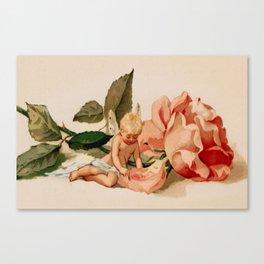 Vintage Rose and Cupid Canvas Print