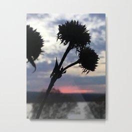 Dying Flower Metal Print