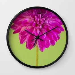 Close-up image of the flower dahlia on green background. Shallow depth of field. Wall Clock
