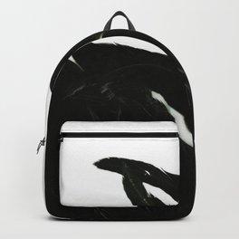 Black Raven Backpack