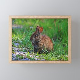 Just a Nibble Framed Mini Art Print