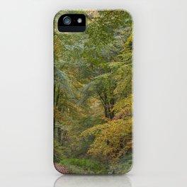Autumn Woodland - 1 iPhone Case