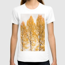 Aspen Trees #decor #buyart #society6 T-shirt
