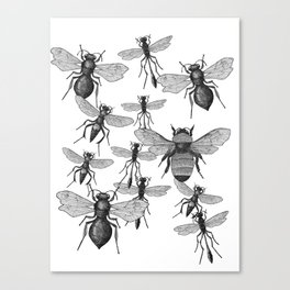 Bees and wasp Flying Canvas Print
