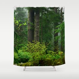 Mist Throughout the Forest Shower Curtain