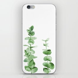 Eucalyptus leaves. iPhone Skin