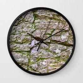 Levels, Glacier National Park Wall Clock