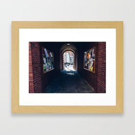 Harvard University Framed Art Print