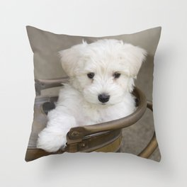 Riley 2 Throw Pillow