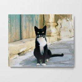 The Aegean cat Metal Print