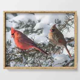 Sunny Winter Cardinals (square) Serving Tray