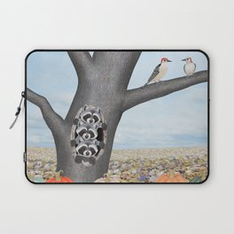 red bellied woodpeckers, heirloom pumpkins, and raccoons in a tree Laptop Sleeve