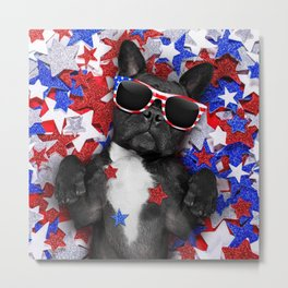 USA DOG Metal Print