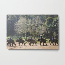 ELEPHANTS 2 (PHOTOGRAPHY) Metal Print