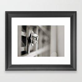 Fence B/W Framed Art Print