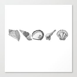 Seashell Doodle Art in Black and White Canvas Print