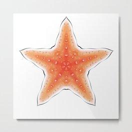 Fishtales: Starfish 8 Metal Print