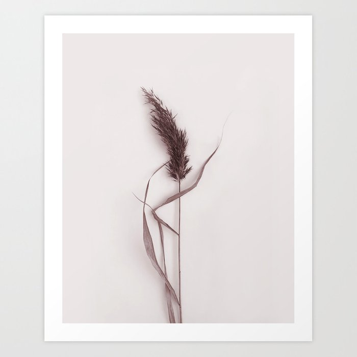 Discover the motif DRIED GRASS by Art by ASolo as a print at TOPPOSTER
